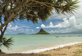 Chinaman's Hat — Stock Photo
