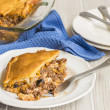 Crescent Roll Lasagna — Stock Photo #46908845