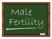 Male Fertility - Classroom Board — Stock Photo
