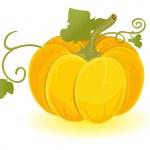 A vector pumpkin — Stock Vector