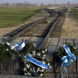 Israel Auschwitz Commemoration — Stock Photo