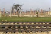 Auschwitz-Birkenau — Stock Photo