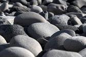 在海岸,冰岛的圆石 — 图库照片