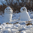 Snowmen in Skaftafell National Park in southern Iceland — Stock Photo #33610395