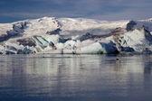 Jokulsarlon glacier lake with seals — Stock Photo