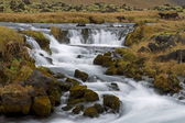 Flowing stream in a mountain valley — Stock Photo