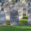 Jewish cemetery in Elburg, Netherlands — Stock Photo #35651291