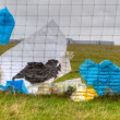 Plastic waste Aterro by the wind against the fence is blown in Wijster, Netherlands — Stock Photo
