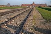 Auschwitz, Poland - November 5, 2008: Infamous gate and railroad leading to Auschwitz-Birkenau — 图库照片