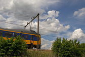 Train hurtles past in the natural environment of the Netherlands — Stock Photo