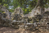 Ruins of the ancient town at Phaselis. — Stock Photo