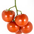 Red tomatoes on a white background. — Stock Photo