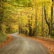 Fall Colors Seasonal Road — Stock Photo