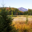 Whiteface mountain with wetland in foreground at sunset — Stock Photo