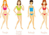 4 women's body types — Stock Vector
