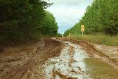 Local road blurred rain — Stock Photo