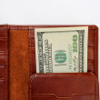 Money brown wallet - Stock Photo