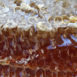 Royalty-Free Stock Photo: Organic honey