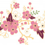 Sakura blossoming branch design element — Stock Vector #16964743