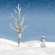 Winter scene — Stock Photo #14325195