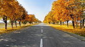 Road to Autumn — Stock Photo