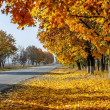 Autumn Road in Russia, 2012 — Stock Photo