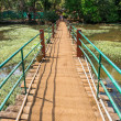 Stock Photo: Lonely Bridge in Indi(Spice Plantation)