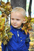 Autumn portrait of the boy with leaves — Stock Photo