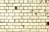 Dirty white brick wall background — Stock Photo