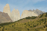 National park Torres del Paine, Chile — Stock Photo