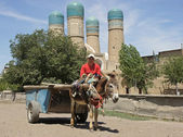 Man and Donkey in front of madrassa Chor Minor, Bukhara, Uzbekistan — Stock Photo