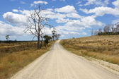 Dirt road, Tasmania, Australia — Stock Photo
