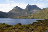 Cradle mountain np, austrália — Foto Stock