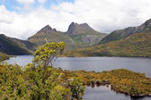 Cradle Mountain NP, Australia — Stock Photo