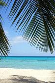 Caribbean Beach, Dominican Republic — Stock Photo