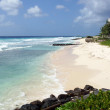 Barbados, Caribbean — Stock Photo #46166883
