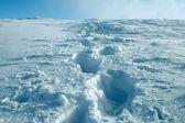 Voetstappen in de sneeuw — Stockfoto
