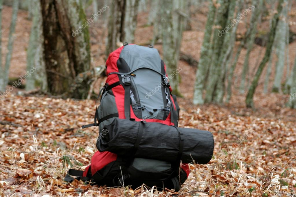 Backpack is on the leaves. — Stock Photo #14450293