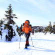 Hiker in winter mountains snowshoeing — Stock Photo #14662415