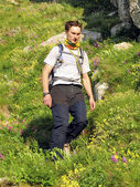 Summer hiking in the mountains. — Stock fotografie