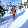Stock Photo: Winter hike on snowshoes.