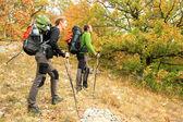 Autumn walk. — Stock Photo