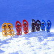 Stock Photo: Snowshoeing. Snowshoes in snow.