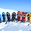Snowshoeing. Snowshoes in the snow. — Stock fotografie