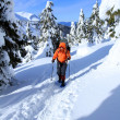 Winter hiking in snowshoes. — Stock Photo #17433501