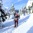Stock Photo: Winter hiking in snowshoes.