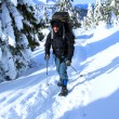 Royalty-Free Stock Photo: Winter hiking in snowshoes.