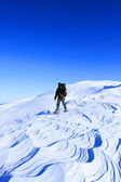 冬はスノーシューでのハイキング. — ストック写真