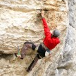 Rock climber — Stock Photo #23815749