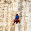 Rock climber — Stock Photo #23815767